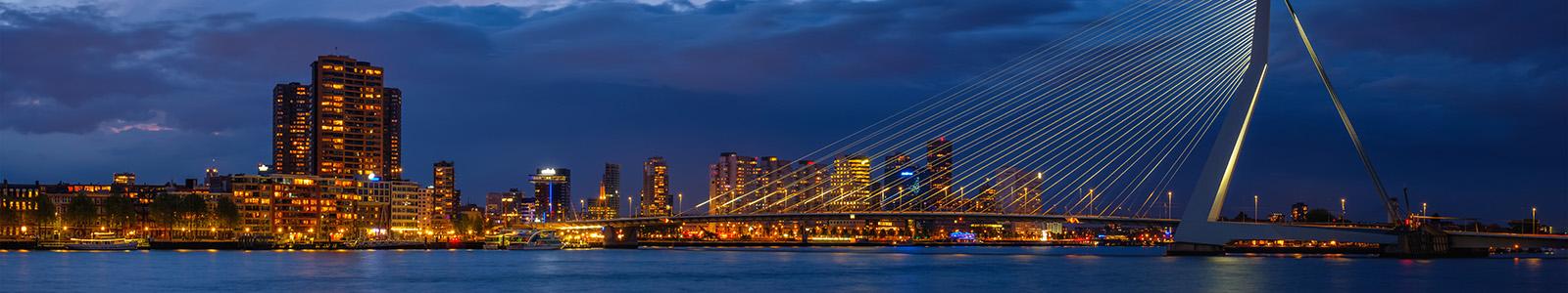 Best SEO Companies Netherlands